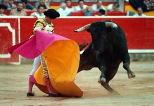 bullfighting madrid